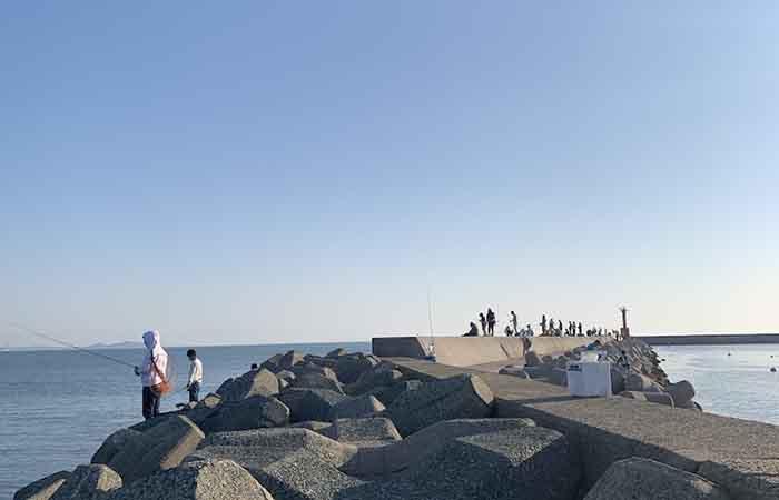 津屋崎漁港釣り人