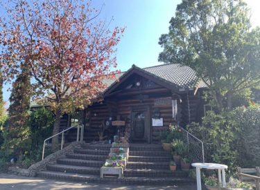 古賀市のフレンチレストラン「遊牧民」で無農薬野菜ランチを堪能
