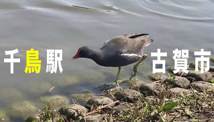 古賀マガジン YouTube