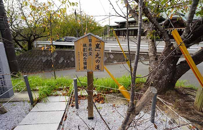 宮地嶽神社 嵐 光の道