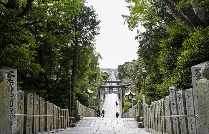 宮地嶽神社 光の道